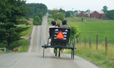 amish community buggy